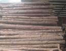 上海缅甸木材进口报关通关手续报关通关代理资料