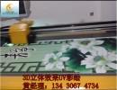 山东艺术瓷砖背景墙3D打印机 淄博瓷砖喷绘机