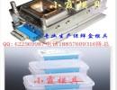 浙江模具厂家   塑料冷藏盒模具 冷藏盒塑胶模具