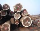 黄埔港木材进口报关|木材进口物种证办理