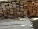 低价供应巴尔杉木原木