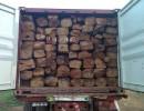 阔叶黄檀木材进口报关资料|阔叶黄檀木材进口报关费用|阔叶黄檀