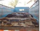 委内瑞拉蓝湿牛皮进口报关清关手续流程公司