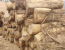 四川成都低价供应黄花梨木材