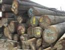上海原木木材进口报关公司