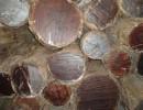 木材报关代理|木材进口报关流程|专业木材进口--