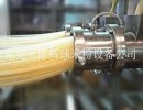 陈辉球全自动桂林米粉机械林业科技大学指定厂家