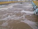 本溪钢厂专用絮凝剂、本溪铁矿专用絮凝剂