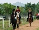 广西生态旅游度假村_最好的那马