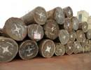 深圳沙比利进口报关代理/木材进口报关代理