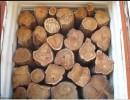俄罗斯原始深林木材进口到青岛港如何清关