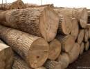 杭州木材进口报关手续