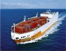 提供小麦、芝麻、鱼粉、次粉、油菜籽、棉籽海运水运集装箱运输