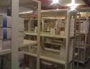 上海医药冷库安装 包药监局通过 验收实用冷库 冷藏 保鲜多功