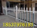 pvc塑钢护栏 塑钢围栏 塑钢栏杆 塑钢栅栏 厂家直销