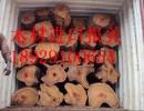 木材进口报关报检公司价格