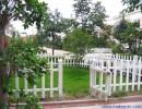 大量批发 PVC护栏 PVC塑钢护栏 草坪护栏 花坛围栏