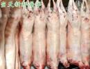 【真空包装】厂家直销火锅专供青海百德新鲜藏羊肉清真食品真空包装空运