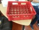 供应经久耐用20瓶装啤酒箱|优质PE12瓶啤酒箱|24瓶全新