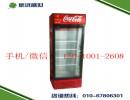 单门冷藏展示柜|立式双门冷饮柜