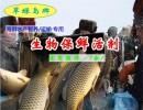 西藏海鲜保活、翠绿岛生物、海鲜保活剂
