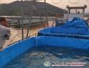 PVC涂层布蓝色帆布鱼池 户外帆布鱼池