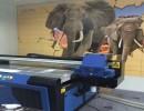 UV平板打印机,万能打印机,平板打印机,T恤印花机专业生产厂