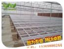 花卉苗床网@北京苗床网市场|供货商
