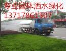 北京市平谷区专业市政园林绿化洒水13717858053