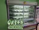 供应深圳上冷藏下冷冻的点菜柜品牌商家