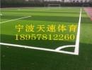 足球场草坪预算*足球场草坪造价*足球场草坪价格*华速供
