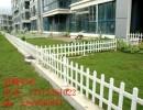 厂家定做塑钢草坪护栏 PVC花坛隔离栏 市政绿化带花坛栅栏