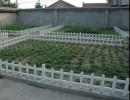 厂家销售 pvc栅栏围栏 PVC花坛草坪护栏 花坛围栏加工批