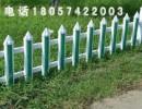 宁波鄞州PVC护栏草坪护栏 塑钢护栏 花坛护栏厂家直销可定制