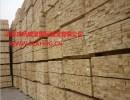 专业提供加拿大北美原木进口海运报关拖车服务---虎桥威盟国际