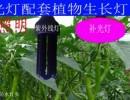蔬菜大棚补光灯三帝sd-3-30补光灯