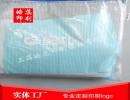 上海松江印刷PP文件夹袋子加工