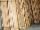 青岛原木木材加工|木材加工|万达木业规模大(图)