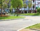 生态旅游、蓬莱仙界生态旅游、生态旅游景点