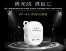 深圳厂家生产电子语音导游讲解器无线导览智能设备政府接待用耳麦
