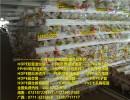 长沙PVC通信管供应商