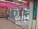 南京超市立式冷冻柜双门尺寸款式报价