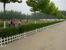 丰瑞金属制品(在线咨询)、草坪护栏、PVC草坪护栏