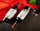批发法国原瓶进口红酒 正品包邮HOTTOO LY干红葡萄酒 代理招商