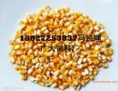 求购玉米高粱碎米次粉等饲料原料