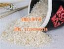 共创食代种子米(图)、共创食代鲜胚芽大米、共创食代