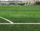 买优质人造草坪,广州博华体育是您优先的选择   咸宁人造草坪